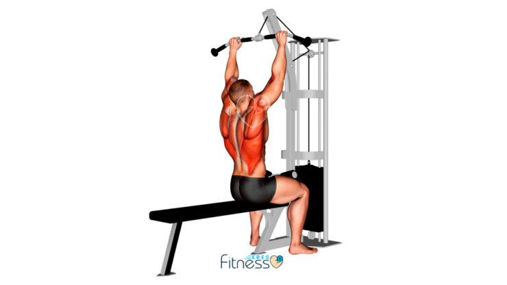 Jalón o polea al Pecho - Guía de ejercicio para espalda