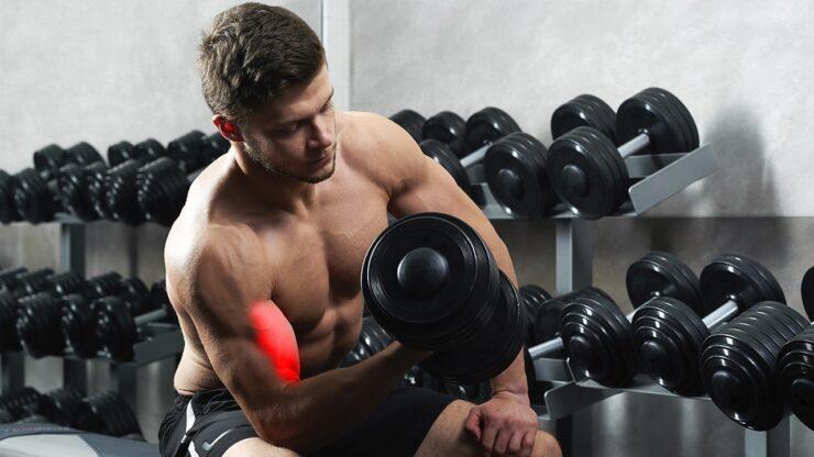 Curl de bíceps concentrado con mancuernas