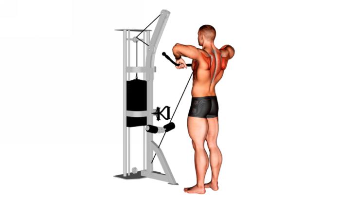 Remo al cuello con polea baja ¿Cómo hacer este ejercicio correctamente?