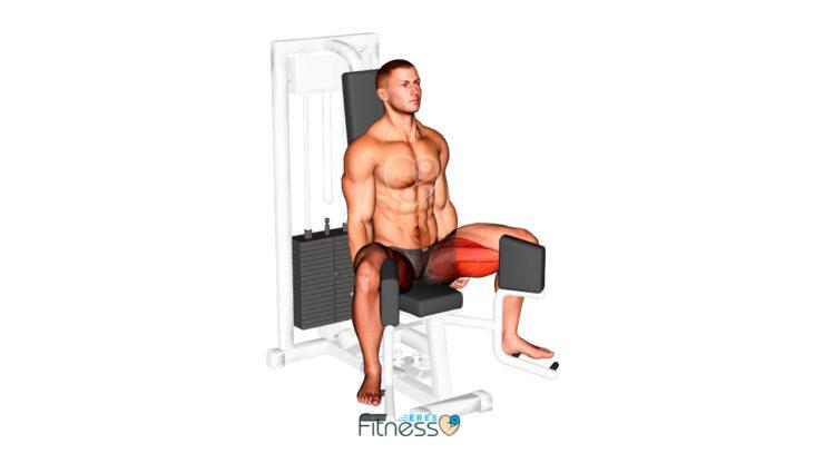 Aductores en máquina ¿Cómo hacer este ejercicio para aductores?