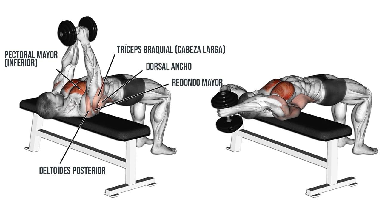 Pullover con mancuerna ¿Qué músculos trabaja?