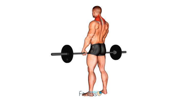 Encogimiento de hombros con barra ¿Qué es y cómo hacerlo correctamente?