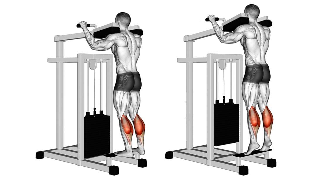 Elevación de talones de pie en máquina ¿Cómo hacerlo correctamente?
