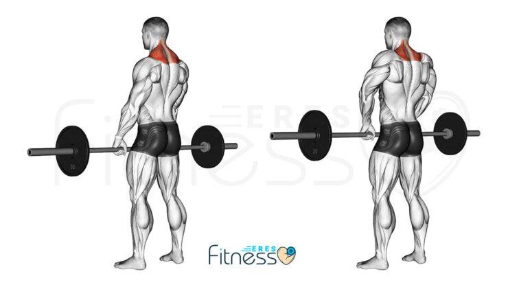 Encogimiento de hombro con barra