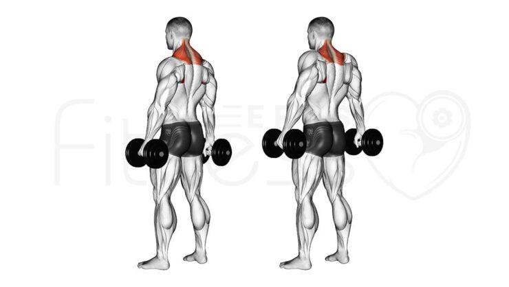 Encogimiento de hombros con mancuernas