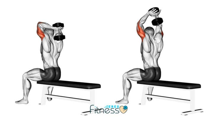 Extensión de tríceps tras nuca con mancuerna