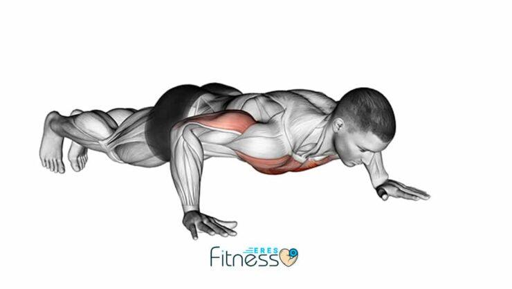 Flexiones o lagartijas: Un ejercicio básico pero muy completo