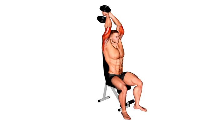 Extensión de tríceps tras nuca con mancuerna ¿Qué es y cómo hacerlo correctamente?