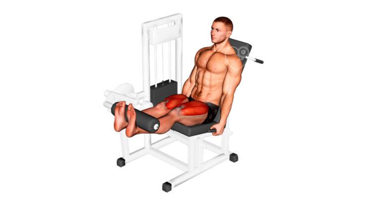 Extensión de piernas en máquina ¿Qué es y cómo hacerlo correctamente? Ejercicio de Gimnasio