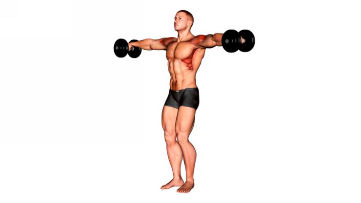 Elevaciones laterales con mancuernas ¿Cómo hacer este ejercicio?