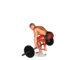 Deadlift o peso muerto con barra ¿Cómo hacer este increíble ejercicio?