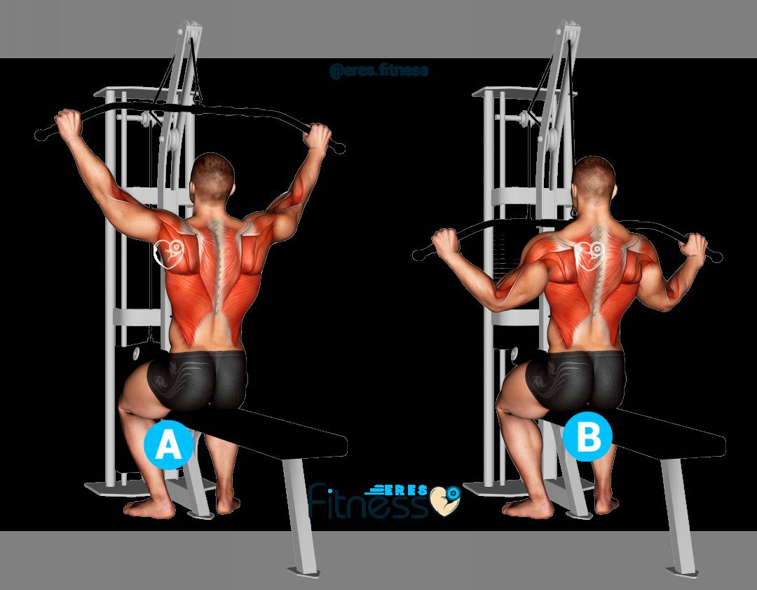 Pull-down o jalón al pecho abierto sentado ¿Cómo hacer este ejercicio para espalda?