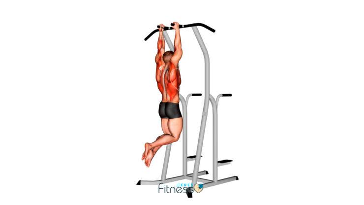 Dominadas agarre neutro ¿Qué es y para qué sirve este ejercicio?