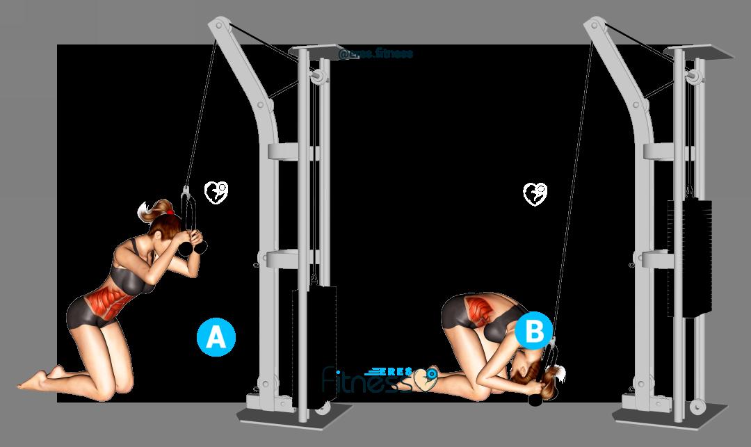 Crunch en polea alta de rodillas ¿Qué músculos involucra y cómo hacerlo correctamente?