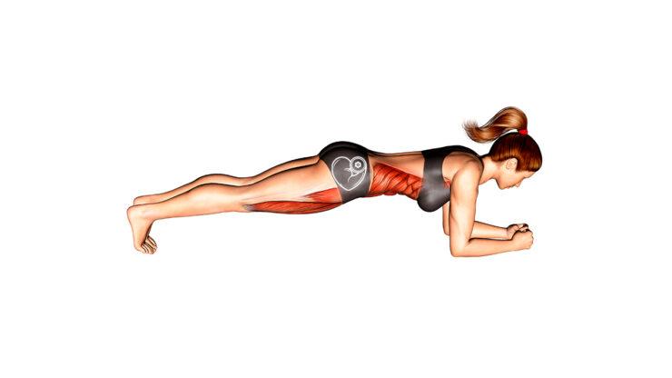 Plank o Plancha ¿Qué es, qué músculos involucra y cómo hacerlo correctamente?