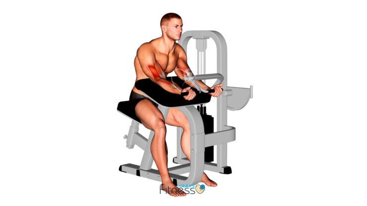 Curl de bíceps concentrado en máquina (Posición inicial)