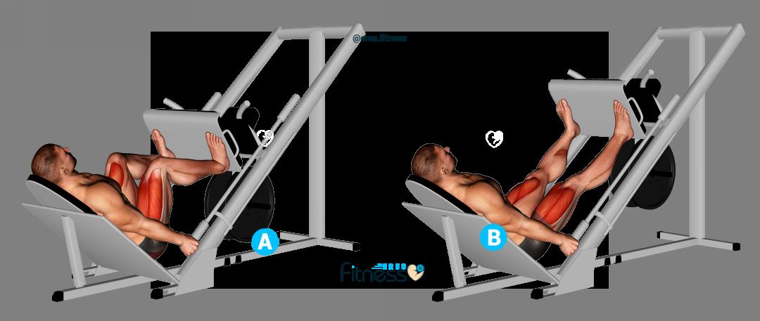 Press de piernas posición abierta ¿Qué es y cómo hacerla correctamente?