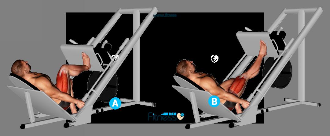 Press a una pierna ✅ Qué es, beneficios y cómo hacerlo