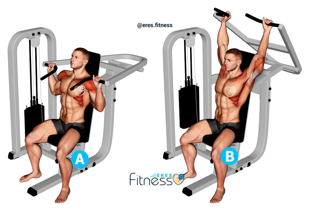 ▷ Press de hombros sentado en máquina ¿Cómo hacerlo correctamente?