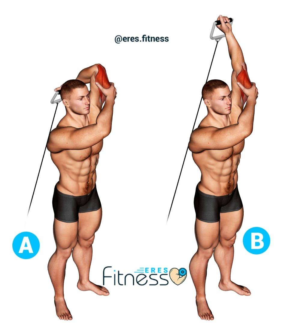 Extensión de tríceps sobre la cabeza a un brazo en polea baja