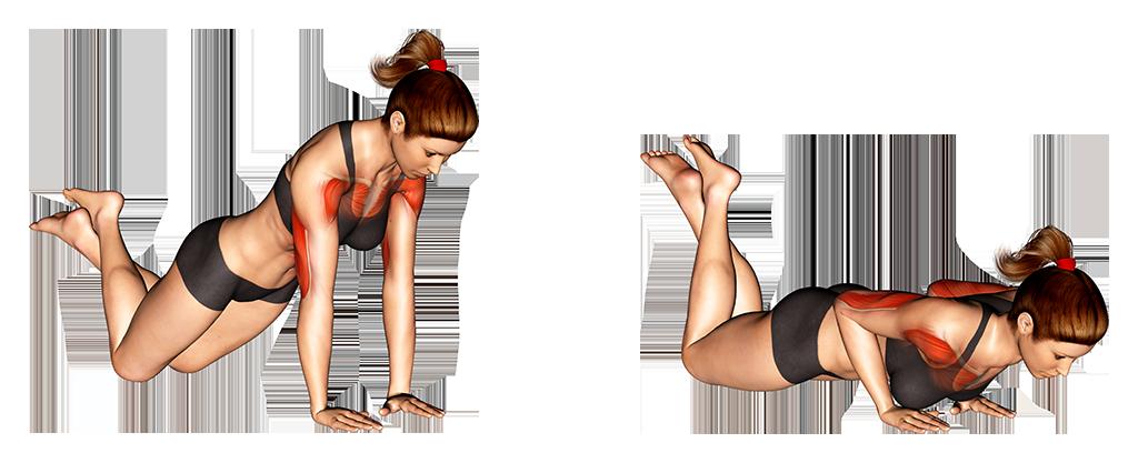 Flexiones de brazos agarre cerrado de rodillas